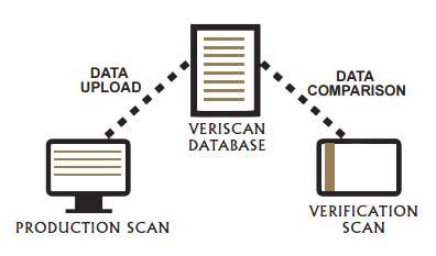 PAMP VeriScan Process